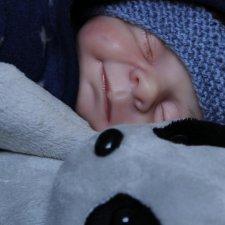 Еще один сплюшик Карлос