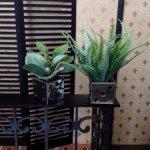 Декоративные растения в кашпо для кукольного интерьера 1:6/1:4