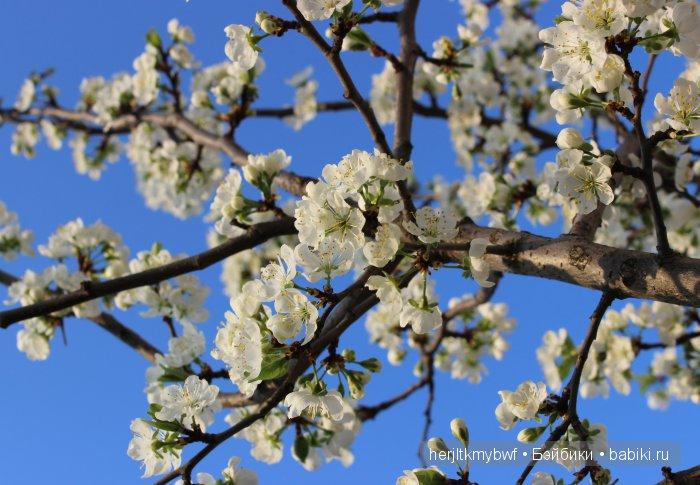 Весна.