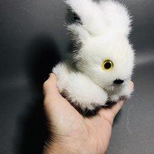 Зайчик из норки