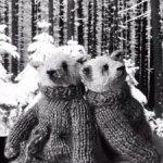 Медвежья пара