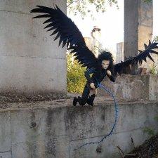Dollshr Orijean Раух и его крылья