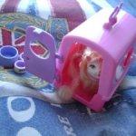 Киса с домиком-переноской из набора Барби Kitty Fun 2000год