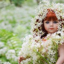 Черемша цветёт