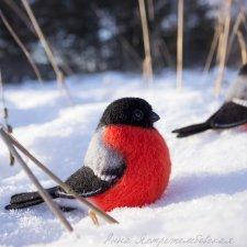 Зимние птахи