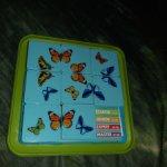 Бабочки-пятнашки от Bondibon