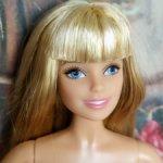 Барби. Barbie шарнирная. Городские Джунгли