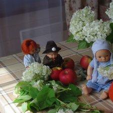 Лето в деревне . Зарисовки из нашей жизни с куклами