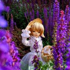 Salvia Forest или Оттенки сиреневого. BJD 5stardoll