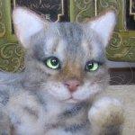 Вася собрался в новый дом, меня не спрашивал - он же кот