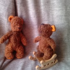 Про медведей моих