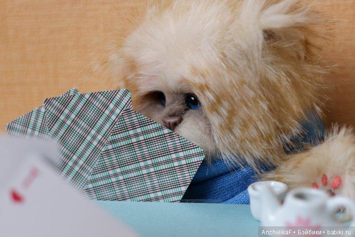 Кот в технике натюр, дом нашел