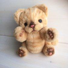 Котенок тедди Лучик
