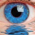 Распродажа глаз 22мм-28мм-200р