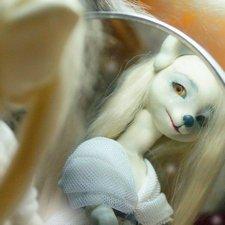 Белая Лиса Сивари, BJD