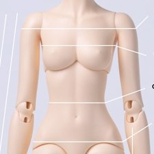 Женское тело Dollits D.K.D girl A body в нормале