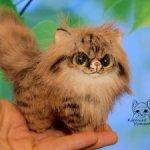 Персидский котенок, Брауни табби.