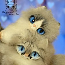 Котята Охос азулес. Чарующие глаза