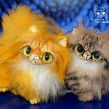 Персидские котята Брауни и Красный табби