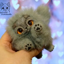Шотландский вислоухий котенок , моно колор серый.