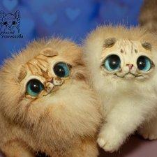 Шотландские вислоухие котята. Линкс-пойнт и Тикированный