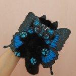 Волшебный бабочковый котенок Папилиофелис