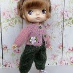 Комбинезон и кофточка для кукол Хiaomi Monst, Холала и других сходных по размерам кукол.