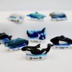 Морские животные, часть 1