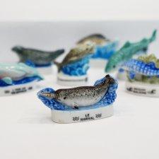 Морские животные, часть 2
