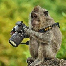 Размер и качество фотографий