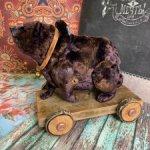 Машка - Медведица на колесах