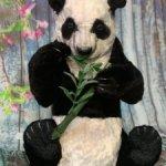 Панда De Жуй
