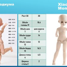 Сравнение Звездочки подиума и Xiaomi Monst