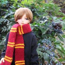 фотосет с шарфиками