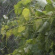 Дождливое-оконное 2