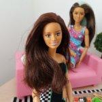 Кукла барби barbie National Geographic  на теле йоги