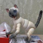 Авторский котик (бжд)