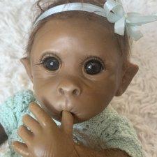 Клементина - домашняя маленькая  обезьянка