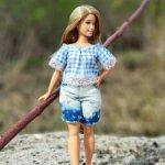 Одежда для Барби-пышки