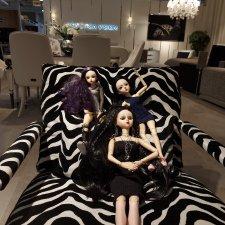 Fashion Dolls 208