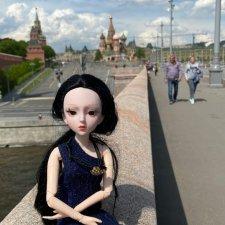 Fashion Dolls  223