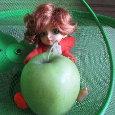 Белка добывает яблоко