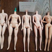 ЛОТ: светлые тела для Барби