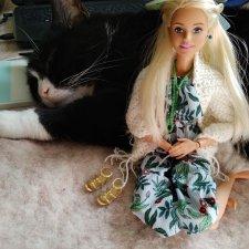 Котик и куколки