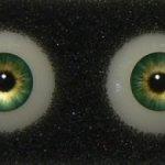 Куплю глаза для куклы  eyeco 11 мм.