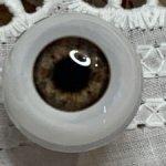 Живые глазки 16 мм для Видаль рохас , бержуан карие