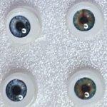 Глазки живой взгляд 8 для  Мини Паолок