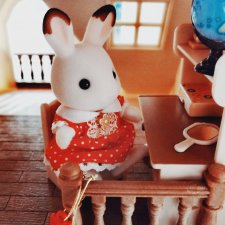 Мир на ладошке. Кто живёт в моей комнате помимо кукол