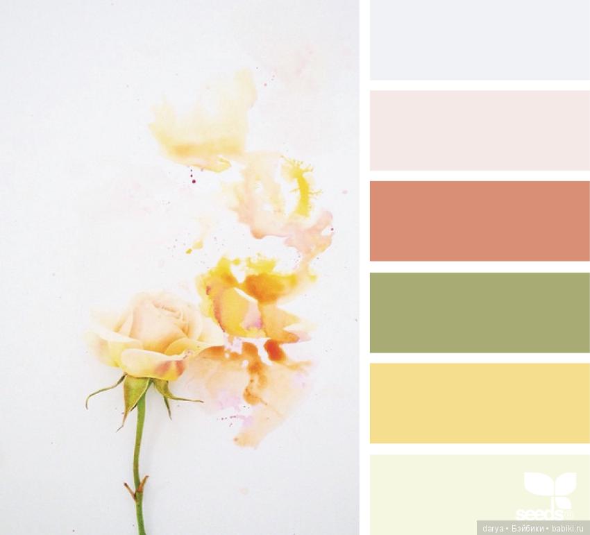Ванильный цвет сочетание с другими цветами в интерьере