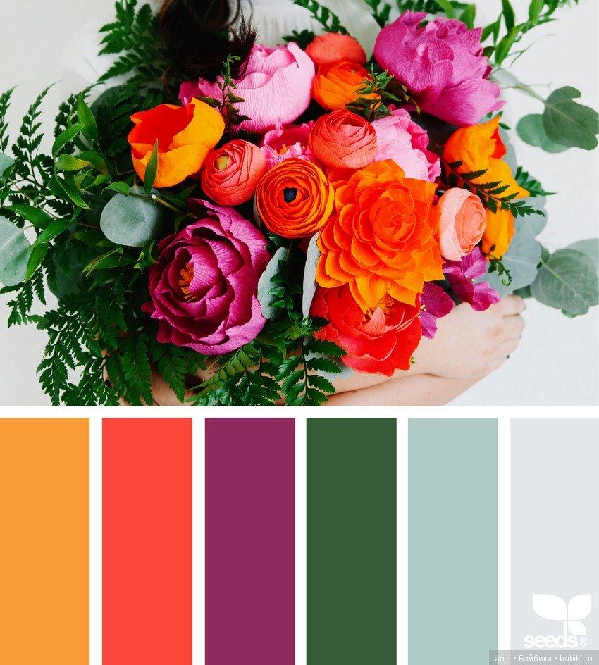 Картинки, сочетание цветов картинки
